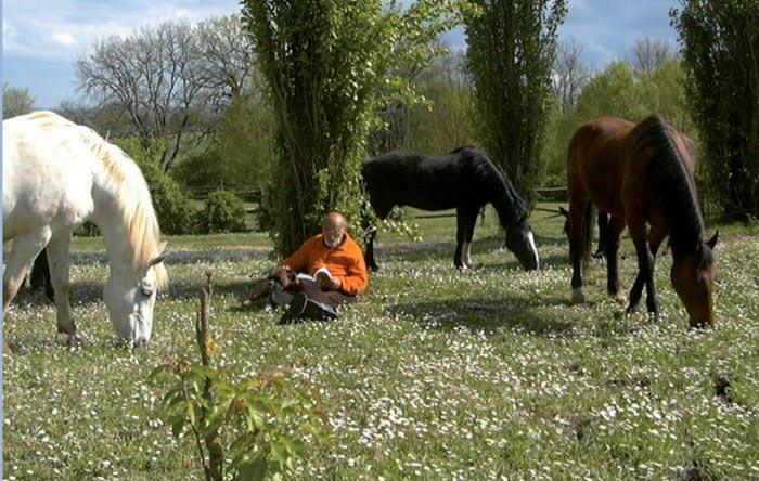 Lettura consigliata. Giovanni Gamberini: Un designer tra i cavalli