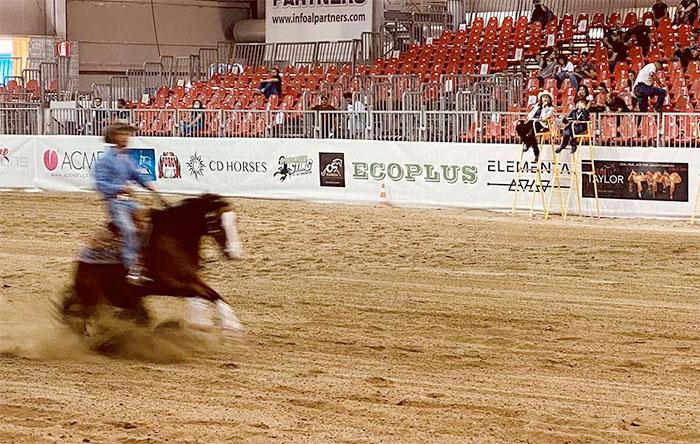 Ecoplus con le sue pavimentazioni rinnova la propria partnership con il Salone del Cavallo Americano a Cremona dal 18 al 20 settembre