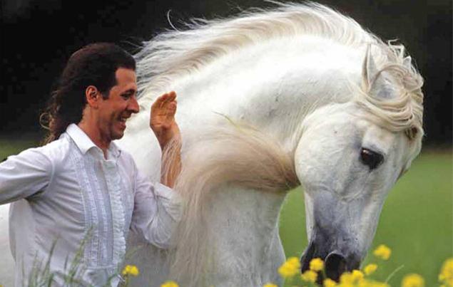 Al galoppo verso la libertà: le sei regole d'oro per educare i cavalli