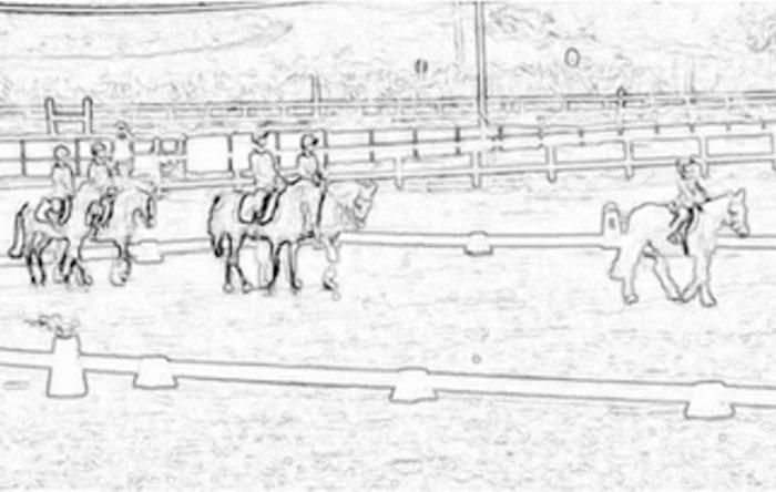 Il Portale Del Cavallo Il Regno Di Chi Ama Il Cavallo Lo Sport E La Natura
