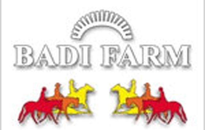 Badi Farm SRL